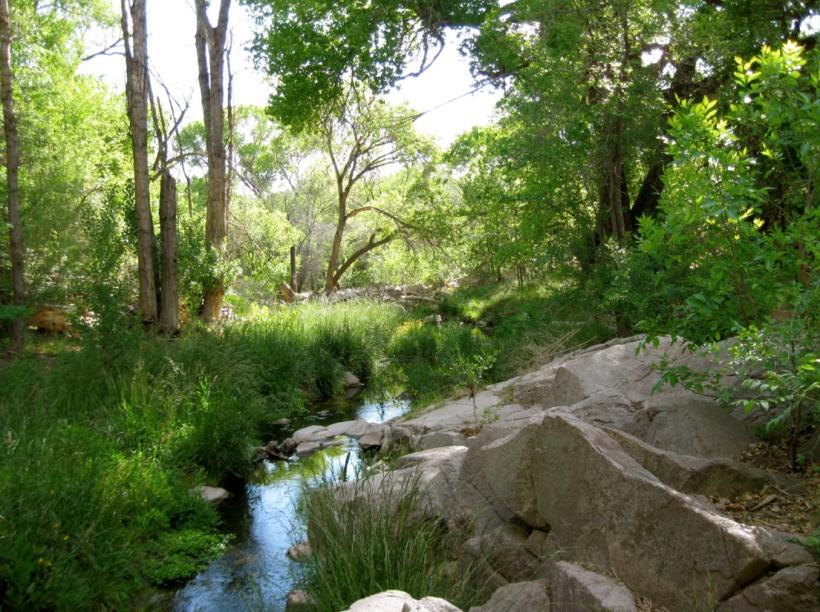 san vicente creek