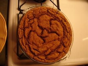 sludge cake